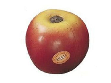 Remo-Fruit-Shaker-Æble