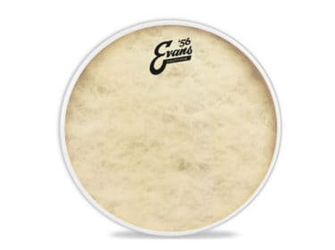evans-calftone-trommeskind Drum Limousine