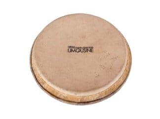 Drum-Limousine-TDP-HEAD7-skind-til-Traditional-Pro-bongostrommer-7