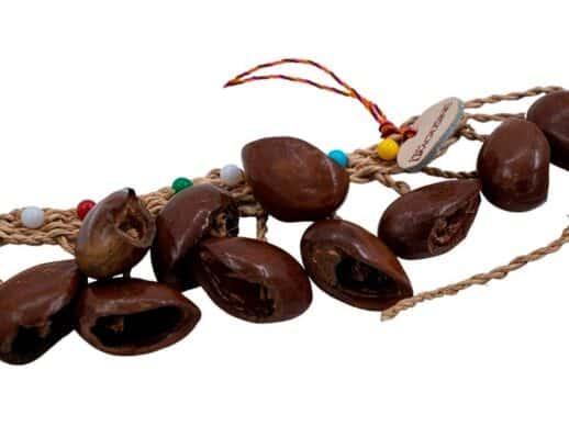 Drum-Limousine-Africa-SD52-kola-rope,-14-Ghana-seeds-logo